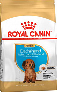 Royal Canin Dachshund Puppy (для щенков породы Такса), 1,5 кг